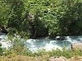 Light forest on the Beshtor river bank.jpg
