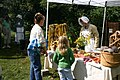 Lindenwald Harvest Day at Martin Van Buren National Historic Site in September 2009 (06a963dc-1100-4001-b115-42dfd0783292).jpg