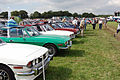 Line up of Stags (1242097632).jpg