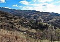 Lisina, Serbia - panoramio (2).jpg