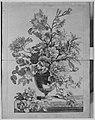 Livre de Toutes Sortes De Fleurs D'apres Nature MET MM8155.jpg