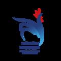 Logotype de la fédération française de touch rugby.png