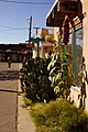 Looking West on Church Street, Old Town Albuquerque - panoramio.jpg