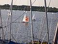 Looking north from the sailing club at Draycote Water - geograph.org.uk - 348146.jpg