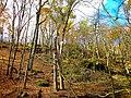 Lost Canyon - panoramio (1).jpg