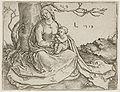 Lucas van Leyden - A Madona com o Menino Jesus sob uma Árvore.jpg