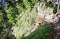 Luchsenfalle - panoramio.jpg