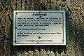 Mühlenbarbek, Reste der Bahnstrecke Wrist–Itzehoe NIK 5048.JPG