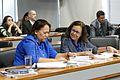 MERCOSUL - Representação Brasileira no Parlamento do Mercosul (25966929476).jpg
