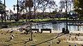 MacArthur Park, Los Angeles, CA, USA - panoramio (3).jpg