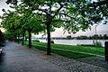 Mainz rheinuferpromenade.jpg