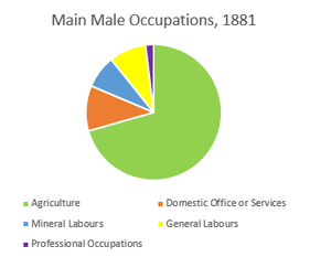 Breakdown of the main occupations males in Little Torrington worked in according to the 1881 census.