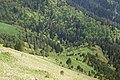 Maly Tkhach, Adygea, Малый Тхач, Склоны долины реки Афонка, Адыгея.jpg