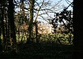 Mansion through the trees - geograph.org.uk - 1805798.jpg
