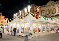 Marquee tent with 4 peacks.jpg
