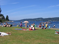 A grassy area with many picnickers, with a large lake in the background