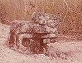 Mayapan Stone Serpent Head 1981.jpg