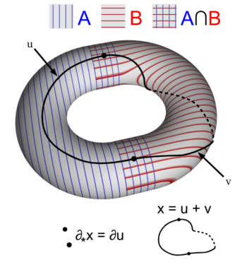Mayer Vietoris sequence boundary map on torus.png