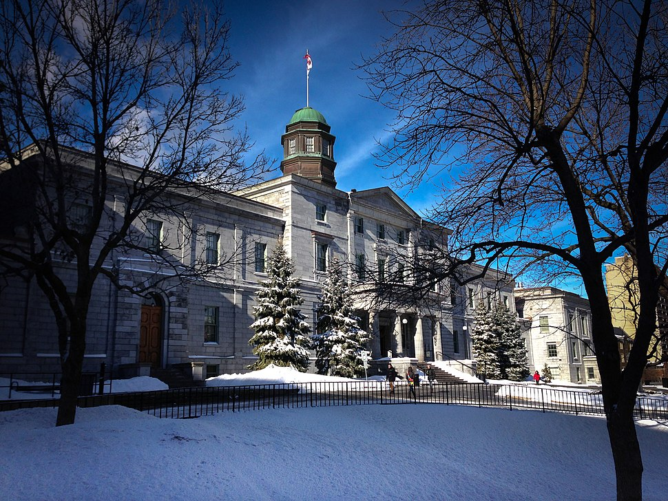 McGill University, Winter