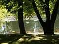 Middle Lake Nostell Priory - geograph.org.uk - 1483263.jpg