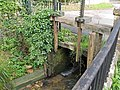 Mill Sluice, Painswick - geograph.org.uk - 962074.jpg