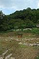 Mimasaka Katsuyama Castle 02.JPG