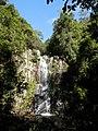Minamurra Falls - panoramio.jpg