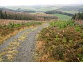 Minch Moor path - geograph.org.uk - 299212.jpg
