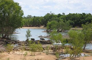 Mitchell River (Queensland) river in Australia