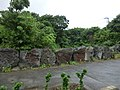 Mitsune, Hachijo, Tokyo 100-1511, Japan - panoramio (11).jpg