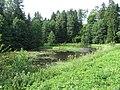 Mizarai 67308, Lithuania - panoramio (1).jpg