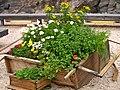 Mobles com a jardineres a l'exterior del Världskulturmuseet I.JPG