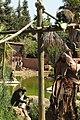 Monkey Island - Lagos Zoo - The Algarve, Portugal (1735632957).jpg