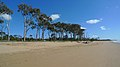 Moore Park Beach.jpg