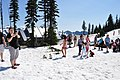Mount Rainier - Paradise Meadow in July 04.jpg