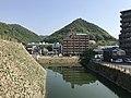 Mount Sakurayama and moat from site of Tenshu of Mihara Castle.jpg