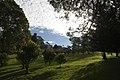 Mount Wilson NSW 2786, Australia - panoramio.jpg