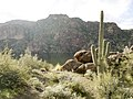 Mt. Pinter Base Loop, Tonto National Forest, Butcher Jones Trail, Fort McDowell, AZ 85264, USA - panoramio (44).jpg