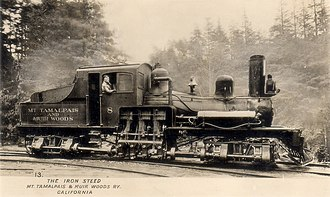 Mount Tamalpais and Muir Woods Railway - Shay No. 8 under steam amidst a redwood grove on the line.
