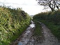 Muddy track heading towards Bradninch - geograph.org.uk - 1582991.jpg