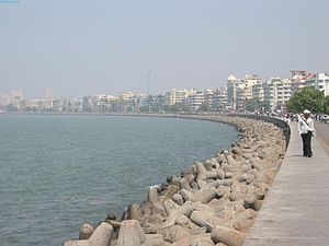 "Caltrop - ""Tetrapods"" (caltrop-shaped concrete structures) used along a seawall along the Marine Drive waterfront at Mumbai"