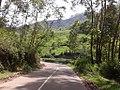 Munnar Beauties2 Kerala.jpg