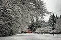 Murdo-Fraser-Park-North-Vancouver-BC-2013-12-A-1.jpg