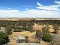 Murray plains, Northern Victoria (8852626570).jpg