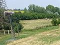 Nézelődők - panoramio.jpg