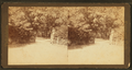 N. W. entrance, from Robert N. Dennis collection of stereoscopic views.png