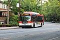 NICE N20G bus.jpg