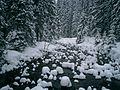 NP Tatra Fluss im Winter.jpg