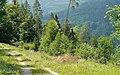 Nasskittelweg - panoramio.jpg
