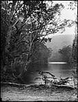 National Park, Illawarra, NSW (2485132162).jpg